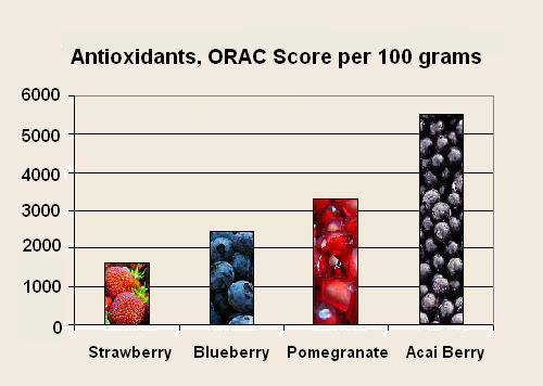 Acai Berry900 is an excellent weight loss best antioxidant, dietary fibre, carbohydrates, essential fatty acids, amino acids, phytosterols, vitamins and minerals