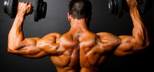 Impressive muscles in a few weeks
