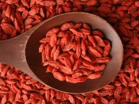 benefits of goji berries: Goji berry contains unique nutrients and antioxidants
