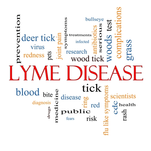 Lyme-Disease, tick diseases ticks carry, tick borne diseases, tick diseases