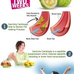 How does garcinia cambogia work for weight loss? Is garcinia cambogia safe?