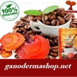 Health Benefits of Ganoderma – The King of Herbs