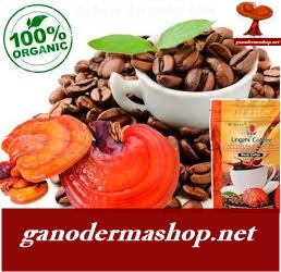 Ganoderma,Ganoderma lucidum,Ganoderma Benefits,herbs,benefits,health,health benefits, natural remedies, my benefits, herbal medicine, natural medicine