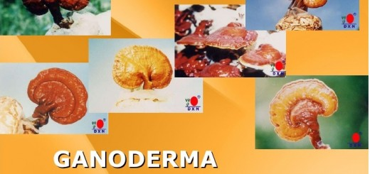 GANODERMA making doctors say impossible