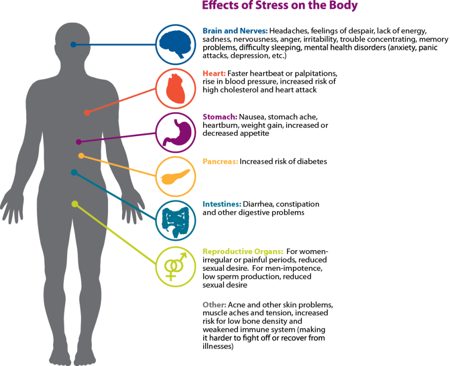 Effects of stress on the body - dealing with stress