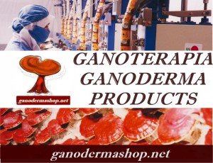 GANOTERAPIA GANODERMA PRODUCTS HEALING MUSHROOM medicinal mushrooms
