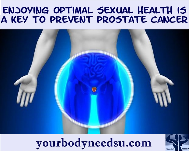 masturbation can help to avoid prostate cancer